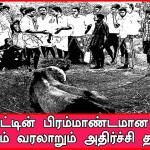 Jallikattu thrilling history of the gigantic shock information - History of Jallikattu