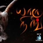 Yaruda Neenga - Jallikattu Special